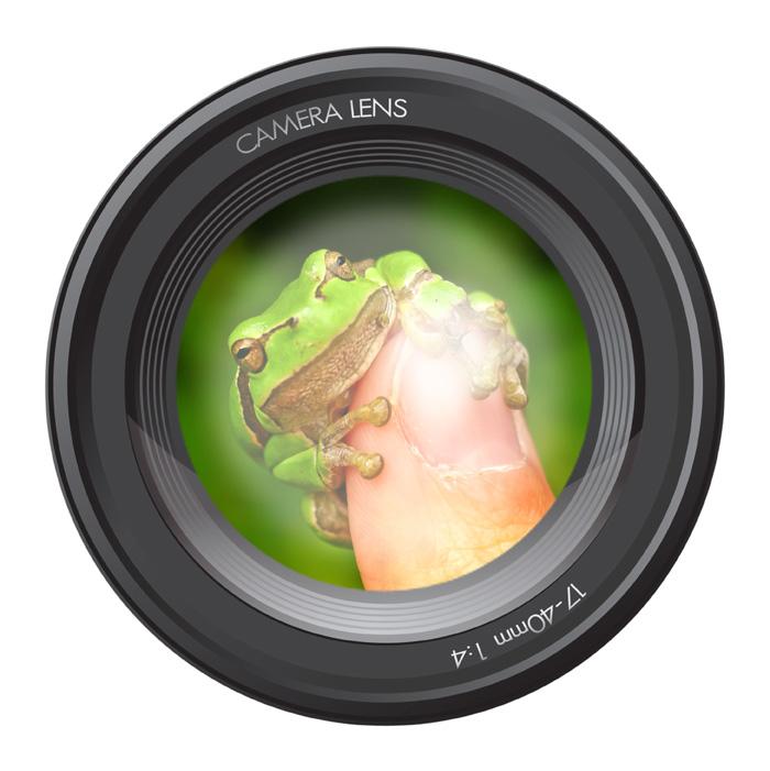 """Der diesjährige Fotowettbewerb der UN-Dekade Biologische Vielfalt steht unter dem Motto """"Klick in die Vielfalt 2013"""". (Foto: obs/Zentrum der Umweltkommunikation der Deutschen Bundesstiftung Umwelt ZUK)"""