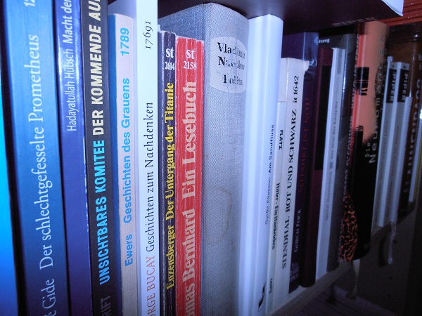 Bücherregal (Foto: ts / cc-by-sa)